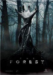 Скачать Игру The Forest 2016 Через Торрент На Русском Бесплатно - фото 2